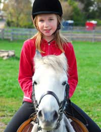 Horse Riding Equipment Second Hand Ebay