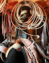 A Glossary Of Tack