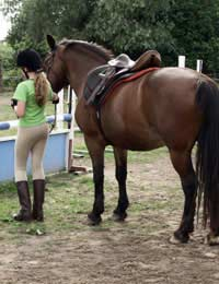 Riding School Find Local Recommendations