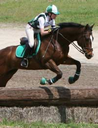 Riding Showjumping Competitions Rider