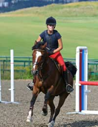 Showjumping Riding Equestrian