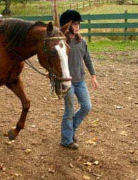 Horse Rider Child Buy Purchase Age Size