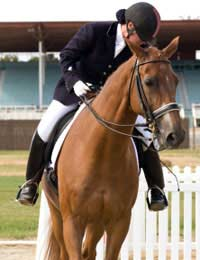 Three Day Event Eventing Eventer Rider